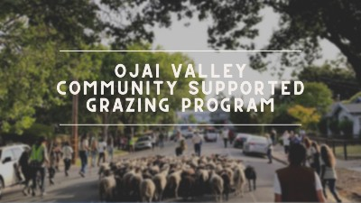 Community-Supported Grazing Program