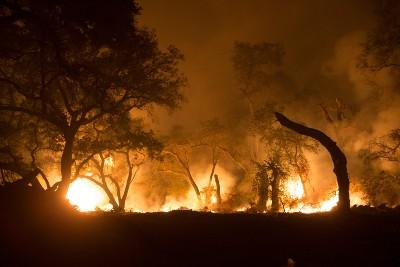 Wildfire Evacuation Vulnerability Assessment