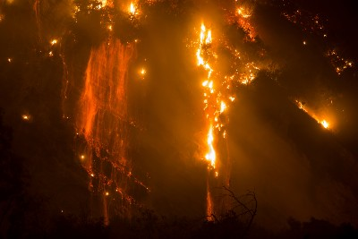 Wildfire Risk and Asset Protection (WRAP)